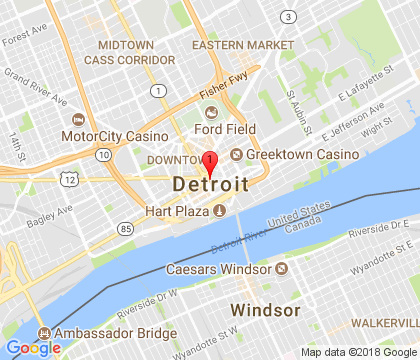 Garage Door Solution Repair Service, Detroit, MI 248-360-2300